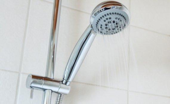 shower wand head